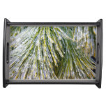 Ice-Coated Pine Needles Winter Nature Photography Serving Tray