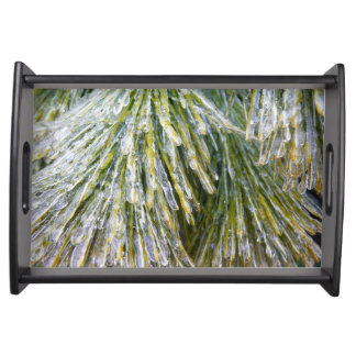 Ice Coated Pine Needles Winter Nature Photography Serving Tray