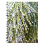 Ice-Coated Pine Needles Winter Nature Photography Spiral Notebook