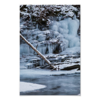Ice Covered Creek Bank Poster