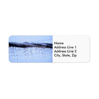 Ice Covered Wire Return Address Label