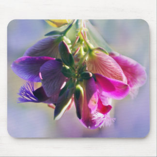 Ice cream bush flowers and meaning mouse pads