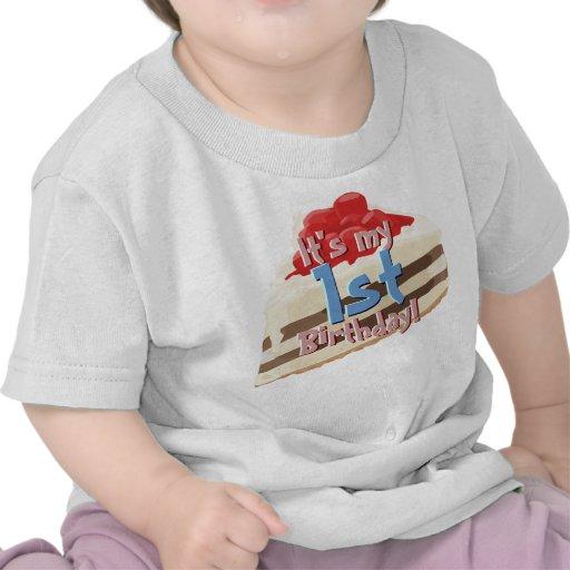 Ice Cream Cake B-day Shirt