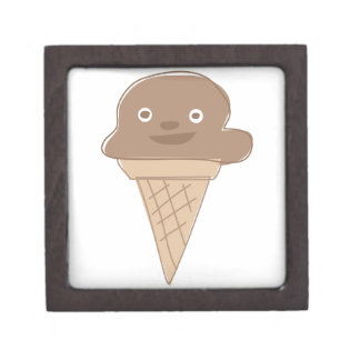 Ice Cream Premium Gift Boxes