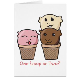 Ice Cream Scoops Card