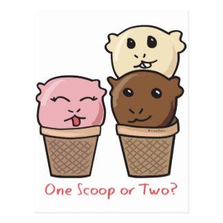 Ice Cream Scoops Postcard