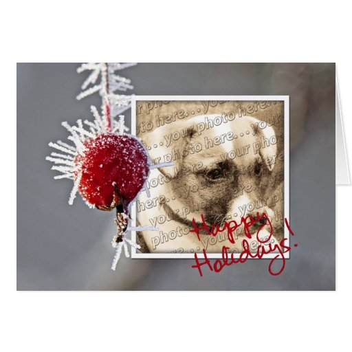 Ice Crystal Holiday Photo Template Card