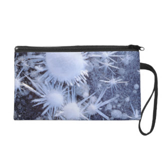 Ice crystals in the Sierra Wristlet