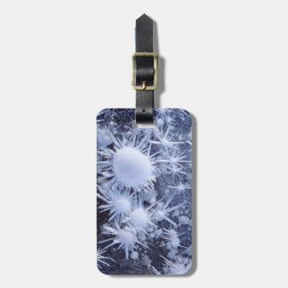 Ice crystals in the Sierra Luggage Tag