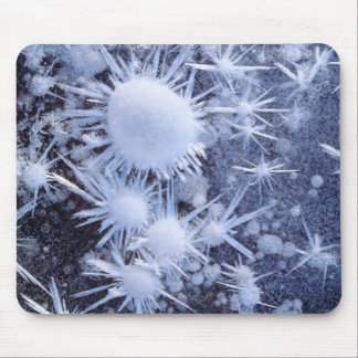 Ice crystals in the Sierra Mouse Pad