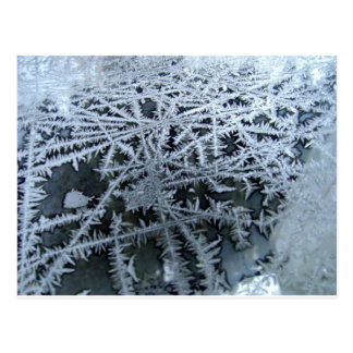 Ice Crystals on a Glass Window Pane Postcard