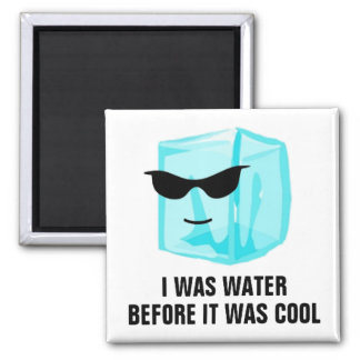 Ice Cube I Was Water Before It Was Cool Magnet