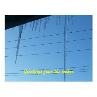 ice daggers among the powerlines postcard