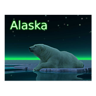 Ice Edge Polar Bear Postcard