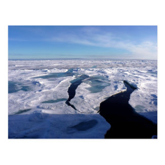 Ice fields in the Arctic Ocean Postcard