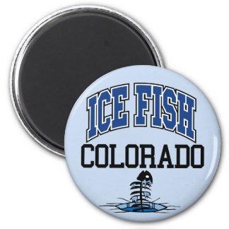 Ice Fish Colorado Magnet
