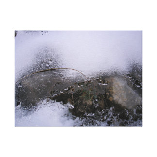 Ice in the forest, Hoists in the Forest Canvas Print