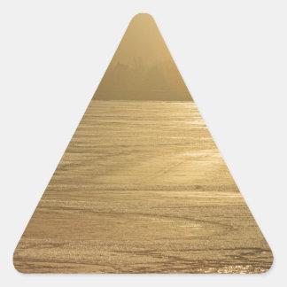 Ice of Gold Triangle Sticker