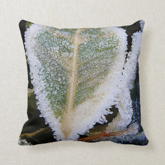 Ice on the edge of a green leaf pillow