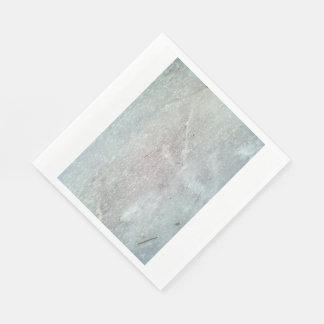 Ice on the ground standard luncheon napkin