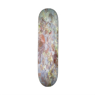 Ice on the ground skate board