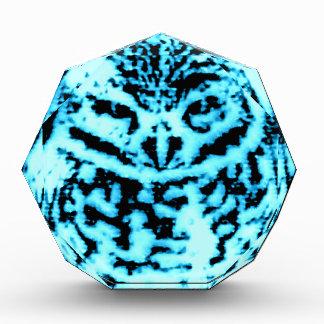 Ice Owl Award