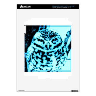Ice Owl Decal For iPad 3