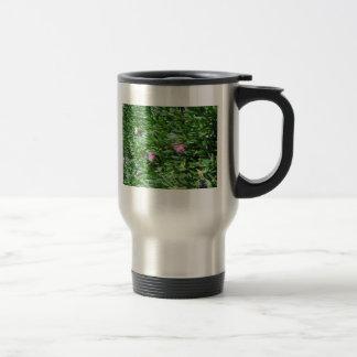 Ice Plant 3 Blooms Mug