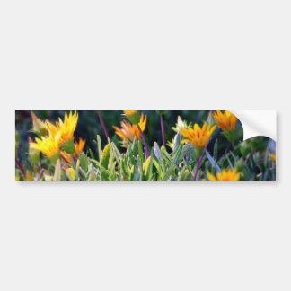 Ice Plant Bumper Sticker