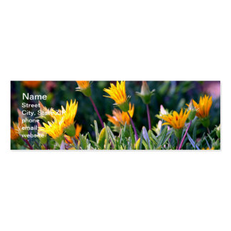 Ice Plant Double-Sided Mini Business Cards (Pack Of 20)
