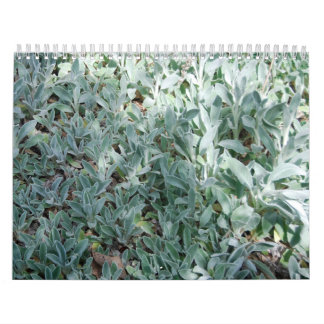 Ice Plant Calendars