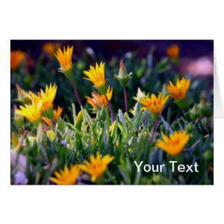 Ice Plant Greeting Cards