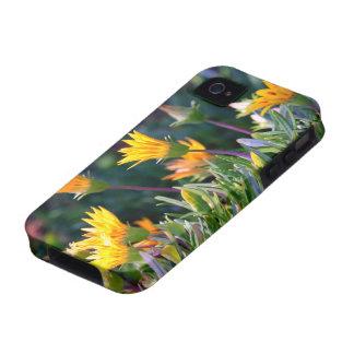 Ice Plant Case-Mate iPhone 4 Cases