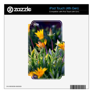 Ice Plant Decal For iPod Touch 4G