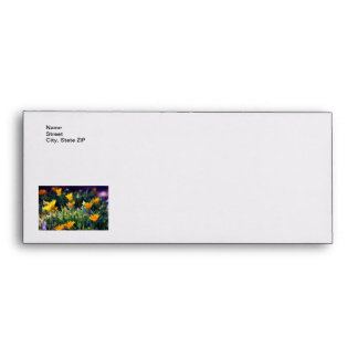 Ice Plant Envelopes