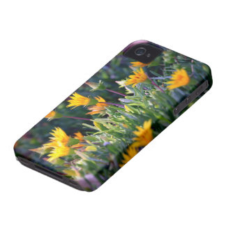 Ice Plant iPhone 4 Covers