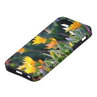 Ice Plant iPhone 5 Case