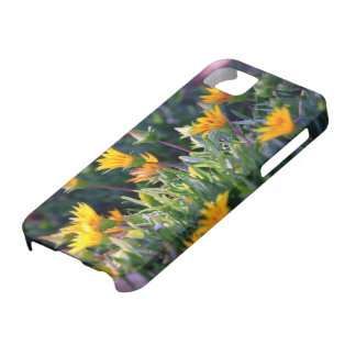 Ice Plant iPhone 5 Covers
