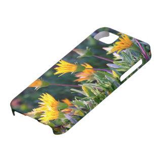 Ice Plant iPhone SE/5/5s Case