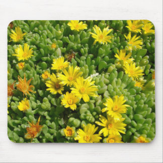 Ice Plant mouse pad