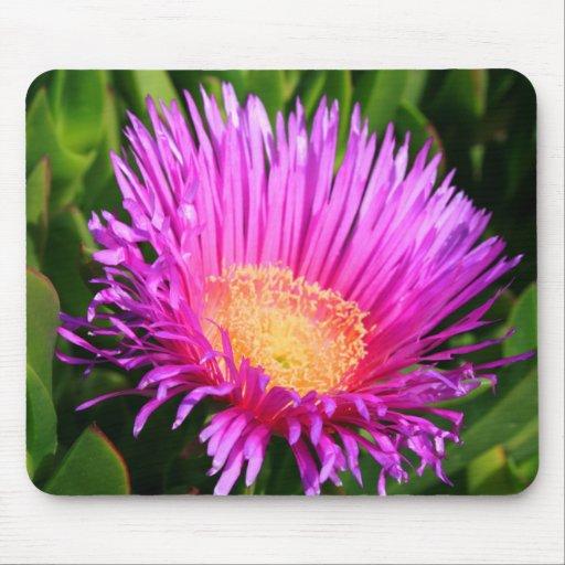 Ice Plant Mousepad