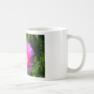 Ice Plant Mug