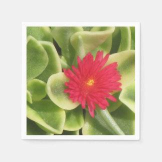 Ice Plant Napkin