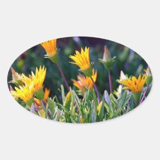 Ice Plant Oval Sticker