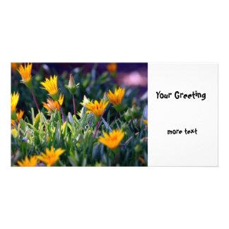Ice Plant Photo Greeting Card