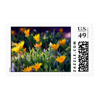 Ice Plant Postage Stamps