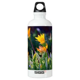 Ice Plant SIGG Traveler 0.6L Water Bottle