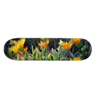 Ice Plant Skateboard