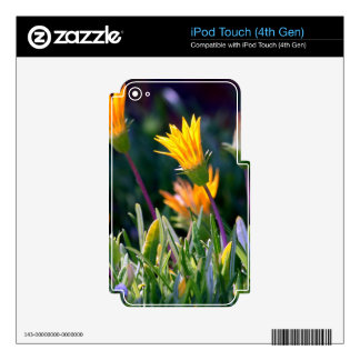 Ice Plant Skins For iPod Touch 4G
