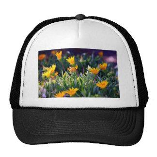 Ice Plant Trucker Hat